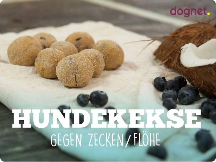 Hundekekse gegen Zecken & Flöhe