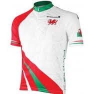 Endura Wales Flag Cycling Jersey