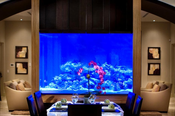 an aquarium separates the dining room from living room in this