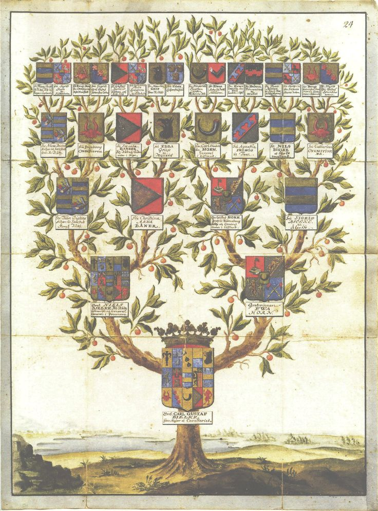 Family Tree of Carl Gustav Bielke, showing his relationships to the Horn, Banér, Oxenstierna, Grip and other families.