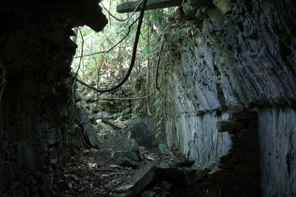 Penny and I were exploring off the beaten path behind the Palenque ruins.  Look what we found!