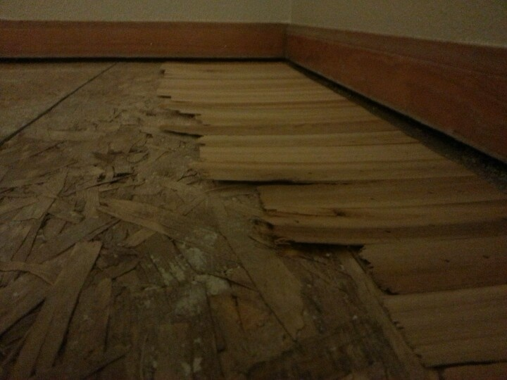 How to level a sloping subfloor with shims  Home  Home