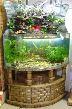 Beautiful Freshwater Aquarium With A Waterfall!