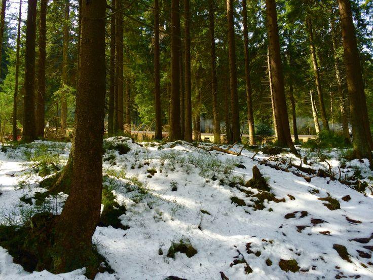 Harz - Brocken