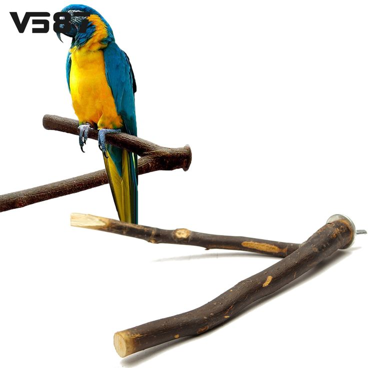 Bird Cage Wood Branch Stand Perches Parrot Wooden Resk Holder  Perches Platform Pet Parakeet Budgie Hanging Play Toys // FREE Shipping //     Buy one here---> https://thepetscastle.com/bird-cage-wood-branch-stand-perches-parrot-wooden-resk-holder-perches-platform-pet-parakeet-budgie-hanging-play-toys/    #hound #sleeping #puppies