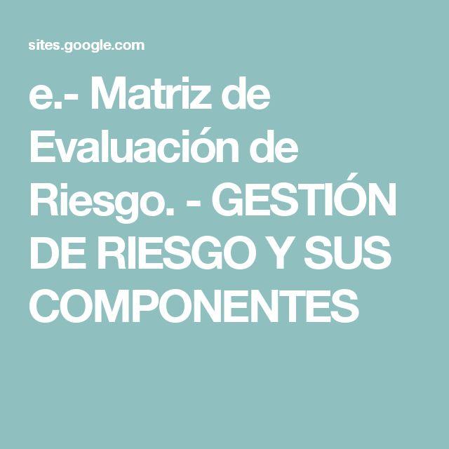 e.- Matriz de Evaluación de Riesgo. - GESTIÓN DE RIESGO Y SUS COMPONENTES