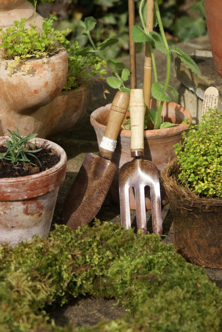 Pin de kary na en jardin pinterest estufas macetas y for Gardening tools 3 letters