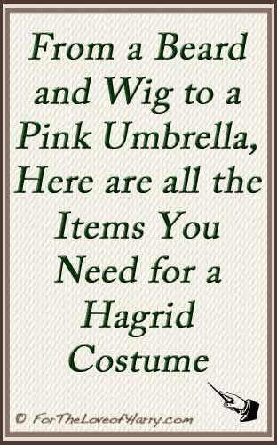 From his wig and beard to clothes and pink umbrella, here is everything you need to dress up as Hagrid. #hp #harrypotter #harrypotterfan #hagrid #rubeushagrid #cosplay #costume #halloween