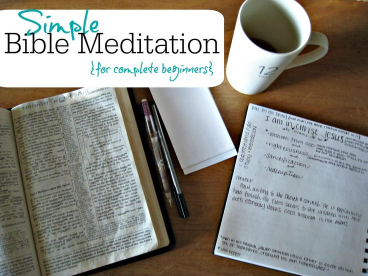Bible Study for Beginners: 4 Easy Steps to Studying a ...