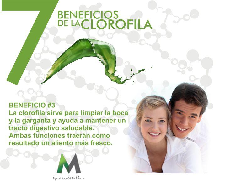 7 beneficios de la clorofila #3