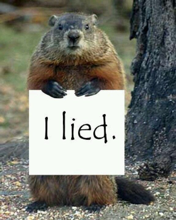 When Groundhog Day arrives, winter is officially half over. The spring dreams of gardeners start to take on a little more substance, as spring is now right around the corner. Learn more about this wacky holiday at http://landscaping.about.com/cs/pestcontrol/a/groundhog_day.htm