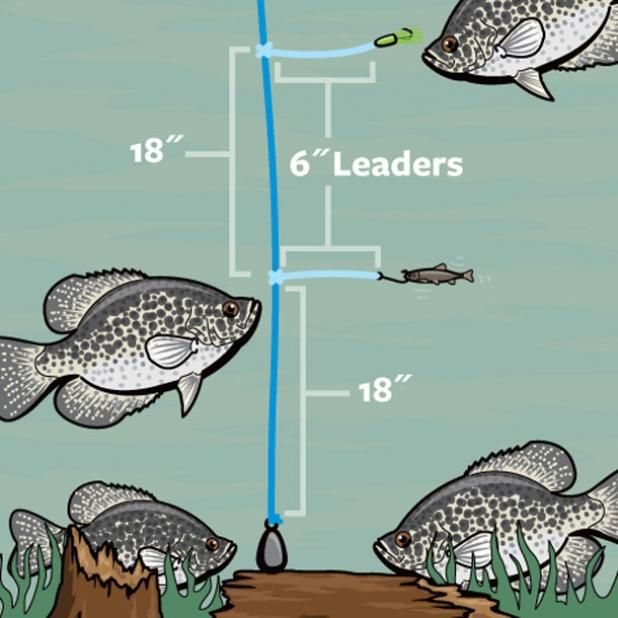 17 best ideas about crappie fishing on pinterest for Sodium fishing gear