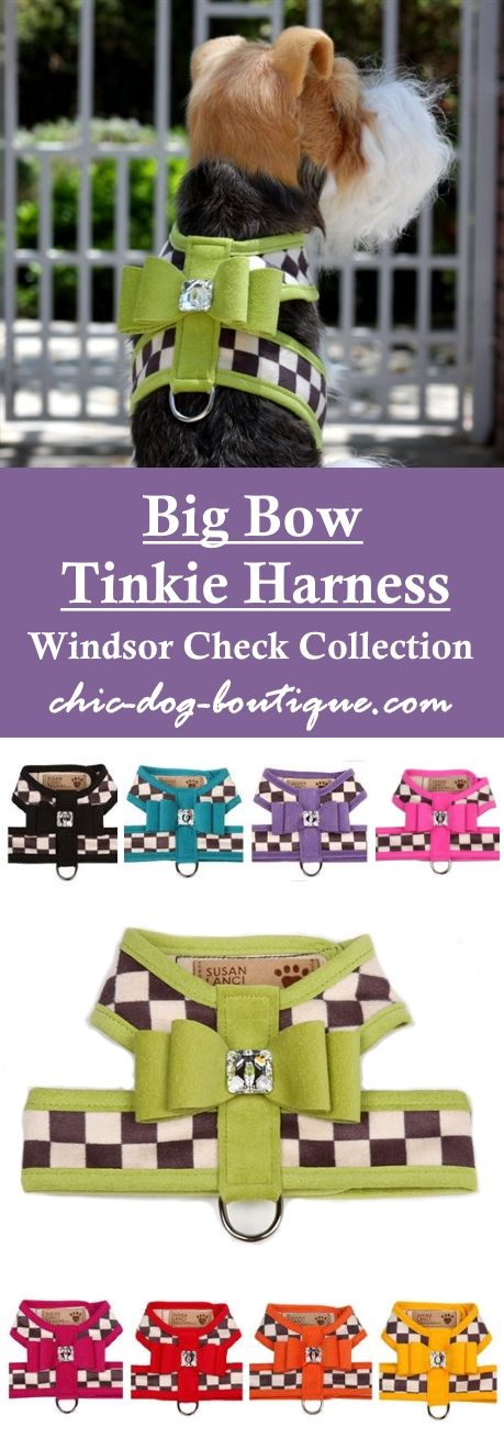"This ""Windsor Check"" tinkie harness for small dogs by Susan Lanci Designs is richly detailed with a bold checkered pattern of charcoal and cream luxe suede and is trimmed in one of nine contrasting colors of your choice in Ultrasuede with a Big Bow and genuine Swarovski crystal button. It secures with strong Velcro neck and chest closures. Get this upscale harness from $84.95 in sizes XS-XXL (small to medium dog breeds only)."