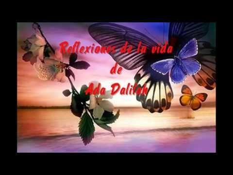 Reflexioes de la vida...La Mariposa  y la flor La mariposa y la flor Cierta vez un hombre pidió a Dios  una flor...y una mariposa, pero Dios le dió un cáctus y una oruga. El hombre quedó triste, pues no entendió por qué su pedido llegó errado. Luego pensó: Con tanta gente que atender... y resolvió no cuestionar. Pasado algún tiempo el ...