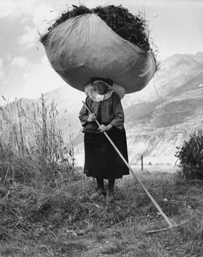 An old woman transporting hay, 1959 Pepi Merisio