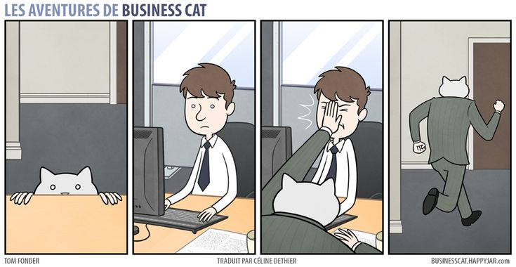 business-cat-5