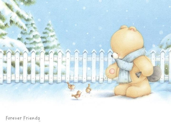 Best Friends Forever Wallpaper 70 Pictures: 108 Best Images About Forever Friends On Pinterest