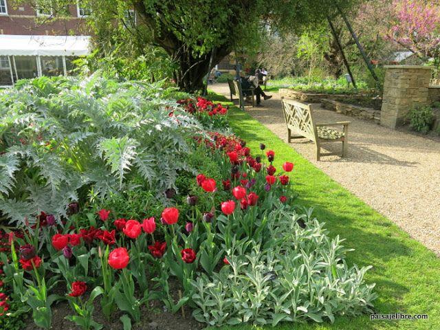 Como Combinar Colores En El Jardin Teoria Del Color Paisaje Libre En 2021 Jardines Como Combinar Colores Tonalidades De Verde