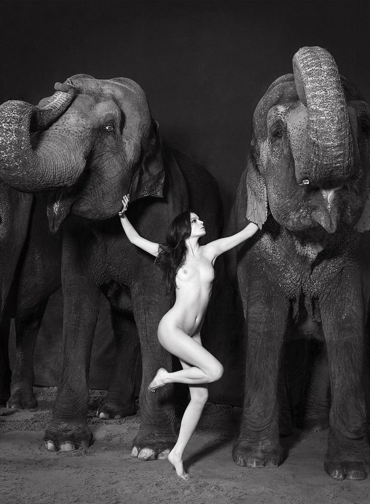 fashion model nude and elephant