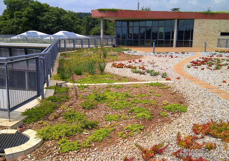 Green roof by Insite landscape architects at SANRAL, South Africa.
