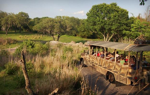 Wild Safari di Afrika #BebasLiburan