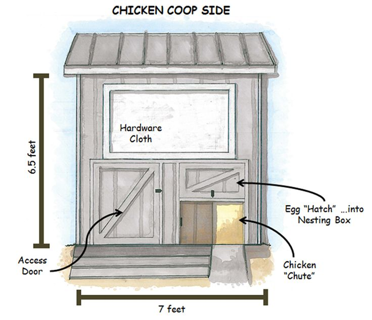 230 Best Chicken Coop Ideas Images On Pinterest | Backyard Chickens,  Backyard Farming And Chicken Coops