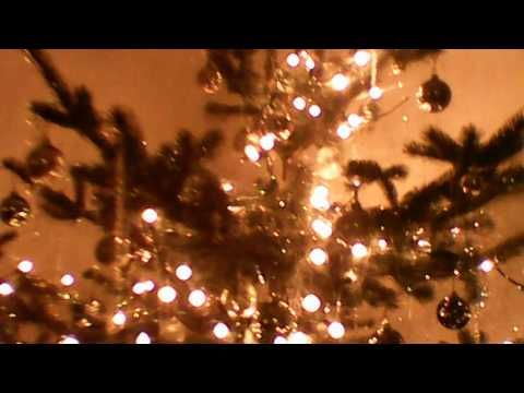 My Christmas Tree !! (Vancouver, BC - Tree Taken From Whistler)