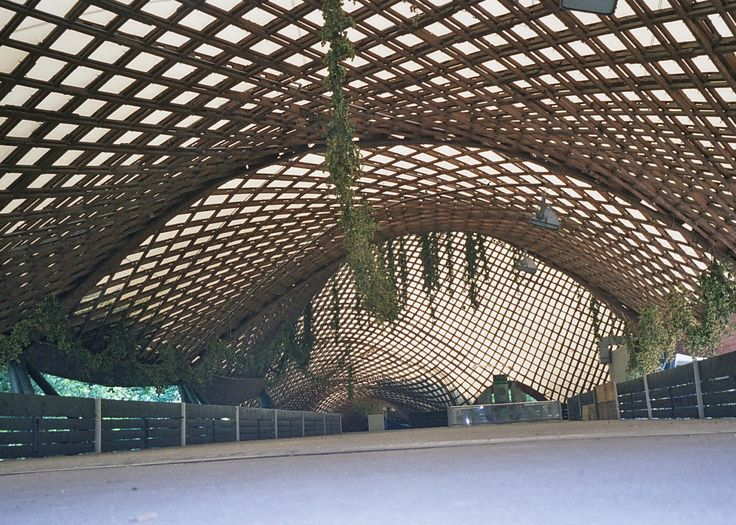"""Mannheim Multihall - architect Frei Otto. This is a """"timber grid shell construction"""" a wonderful organic labyrinth of curving timber lattices encompassing two open space halls."""