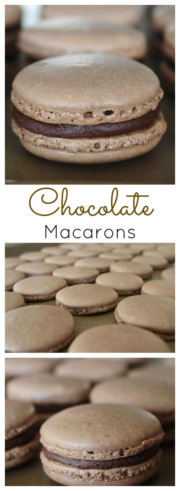 Chocolate Macarons   livforcake.com