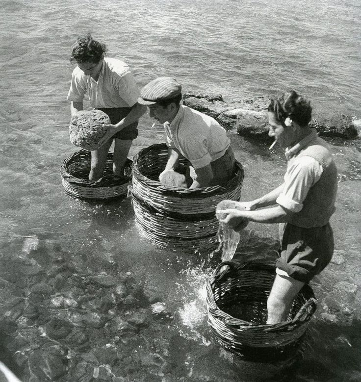 Collecting sponges ashore - Aegina 1950