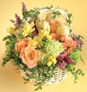 Mixed floral basket suitable for gift giving.