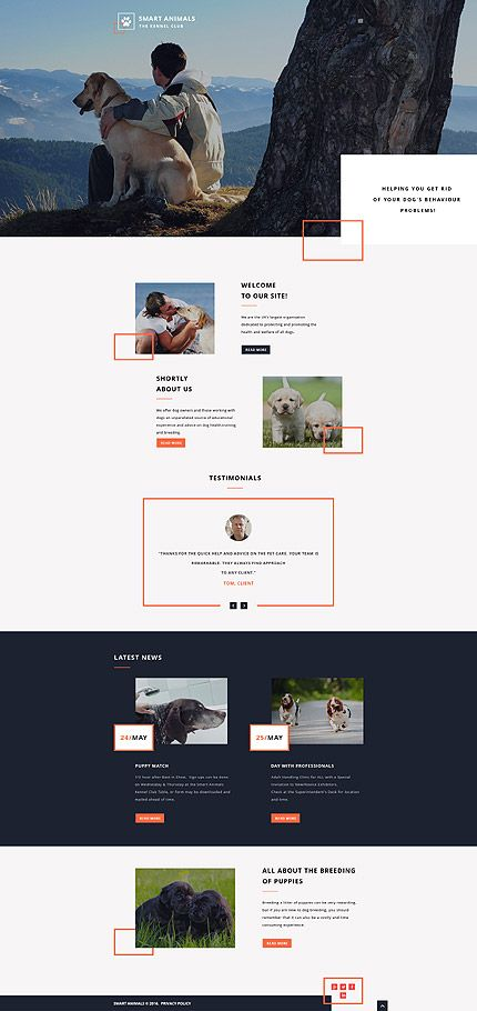 50 best images about Animals & Pets Web Templates on Pinterest