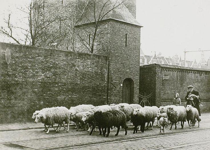Oude foto van de Bagijntoren.