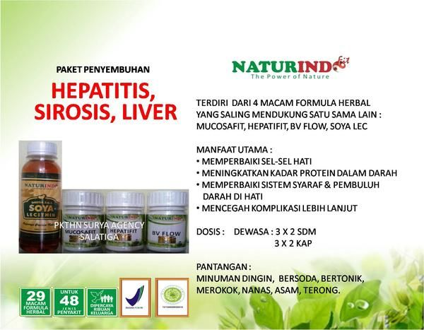 OBAT HERBAL HEPATITIS, SIROSIS, LIVER  - NATURINDO