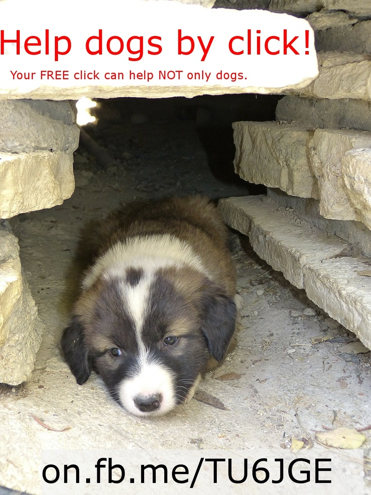 www.on.fb.me/TU6JGE -> Charity sites list. Your FREE clicks can help.