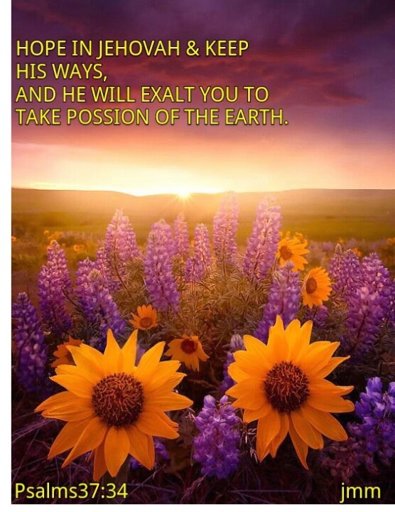 "Jehovah God  offers passion  of the earth to those who will follow"" his word "" the BIBLE."