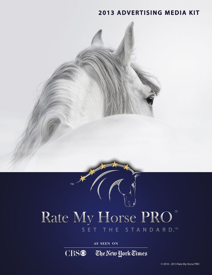 Best Equine Advertising Images On   Advertising