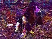 "New artwork for sale! - "" Basset Hound Dog Pet  by PixBreak Art "" - http://ift.tt/2h35T1h"