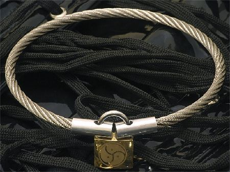Hidden bdsm collars