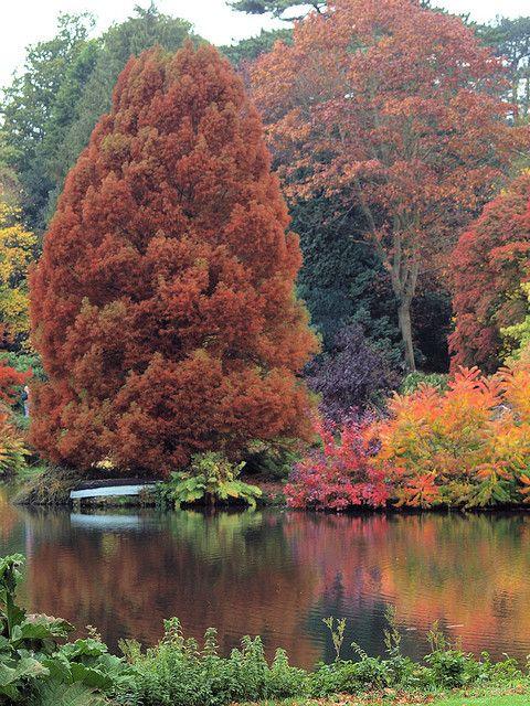 Sandringham House lake, Norfolk, England