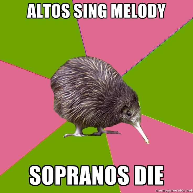 Choir Kiwi | Meme Generator