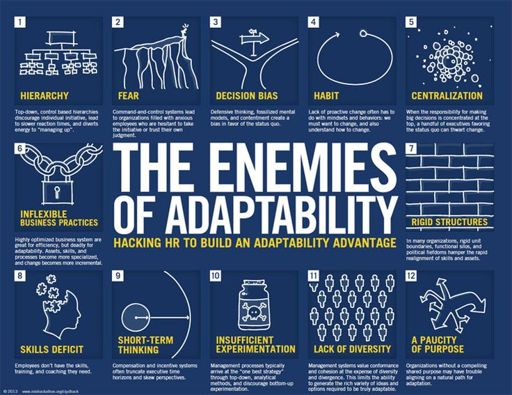 The 12 Enemies of Adaptability (Human Resources)