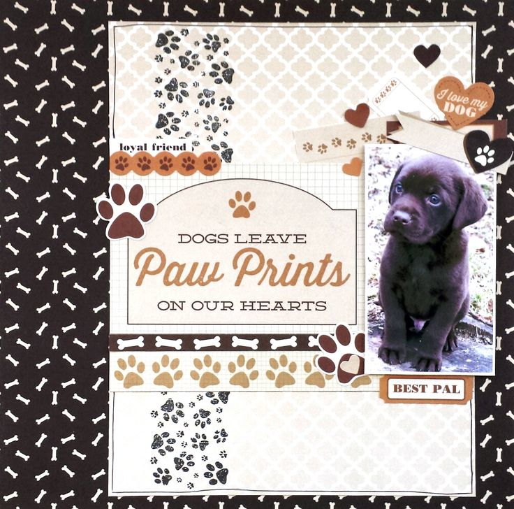 """Paw Prints"" Layout by Amanda Baldwin for Kaisercraft 'Furry Friends' collection…"