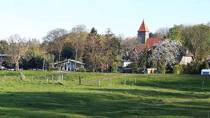 Malen bei Alt Reddevitz – Etappe unsererMalreise auf Rügen   Frühlingsmorgen in Middelhagen (c) Frank Koebsch (3)