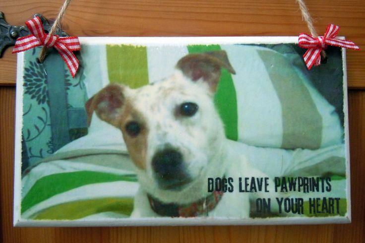 Dog Plaque