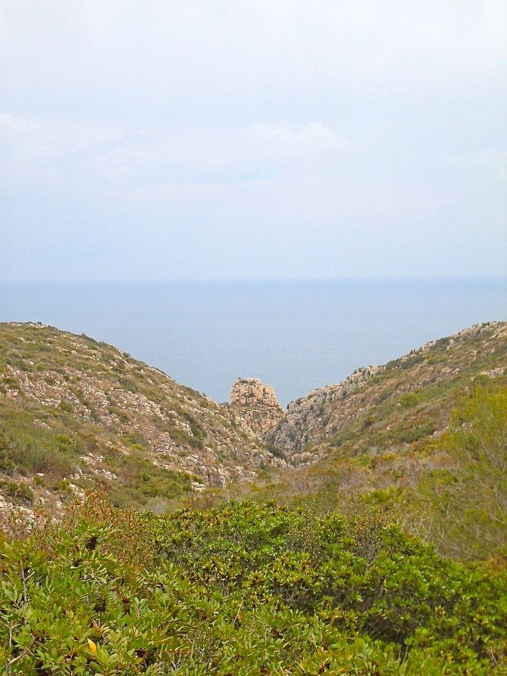 Cap de Sant Antoni #mediterranean #sea #nature