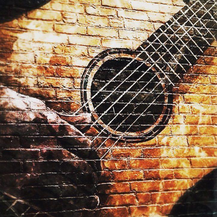 ART  #toronto #tha6ix #yyz #streetart #graffiti #tattoo #music #guitar #riff #guitarpickups #gibson #fenderguitar #jackson #electricguitars #classic #plasticfanstic #shred #musiclover #acoustic #enrichment #godsmack #photography by: @cloud.9.designs