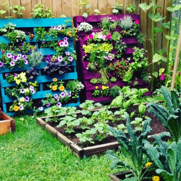 ive seen these before but this is the first time ive - Garden Ideas With Pallets