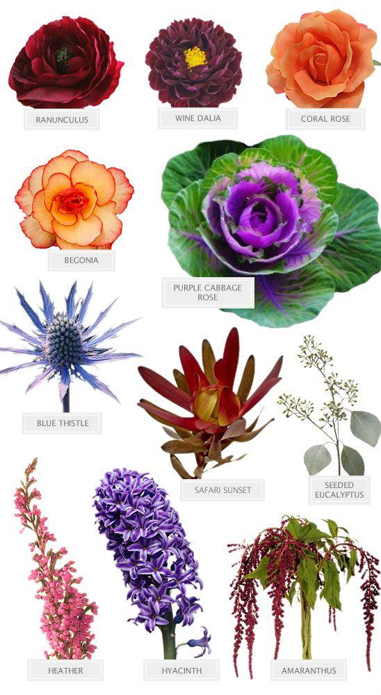 великих название срезанных цветов с картинками экзотика день дизайнеры