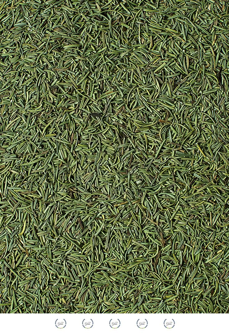 Rosemary is part of many herbal compounds, medicinal infusions, tea or ointments. It can be added to the bath and also be used as filling for pillows, enriching thus the healing effects of hulls. It includes among others diosmetin, which strengthens the blood vessels, has beneficial effects on the cardiovascular system, raises low blood pressure and improves memory and concentration. It is also used as support in treating Raynaud's syndrome, depression, apathy, and nervous exhaustion.